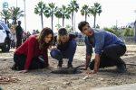 Scorpion S04E11: Review zur Folge