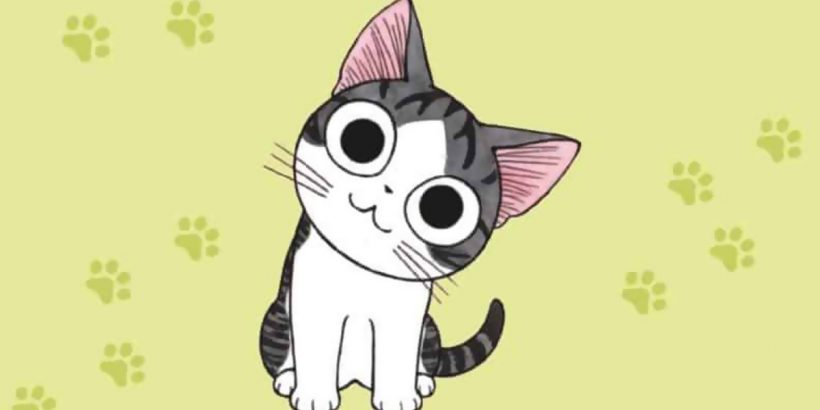 Katze Chi