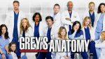 Grey's Anatomy: Heute startet Staffel 14 auf ProSieben