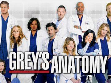 Grey's Anatomy staffel 14