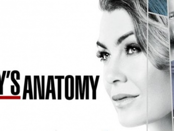 grey's anatomy staffel 16 staffel 17